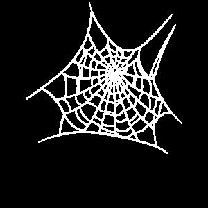 Spinnennetz Spinnenweben Spinne