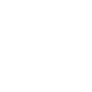 Spinnennetz Spinnenweben
