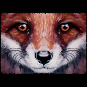 kleiner Fuchs | Yolo-Artwork