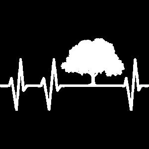 i love trees klimawandel