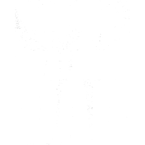 My Dad is The Walking Dad Vater Vatertag Kind