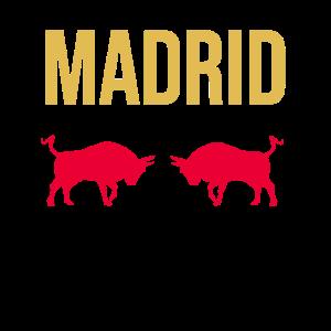 Stierkampf Madrid Hauptstadt Spanien Souvenir