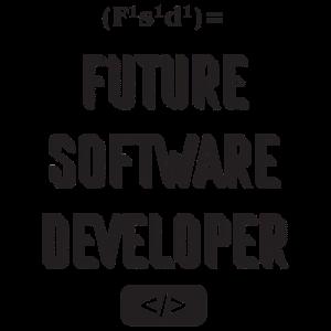 Future software developer