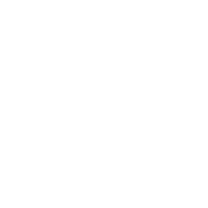 Evolution Gamer