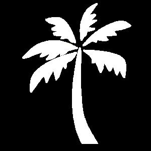 weiße Palme