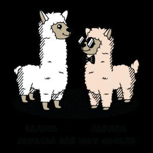 Lama Alpaka tier Cool lustig süß comis geschenk