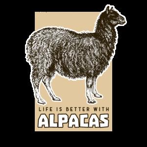 Vintage Alpaca Geschenk