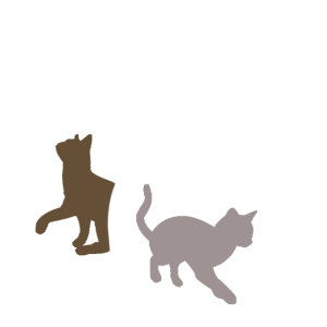 Katzen, Weiße Mama und zwei Junge