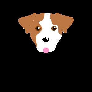 Anglofranzose Amerikanischer Foxhound Hundekopf