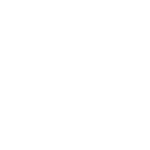 Logo Palme Weiss