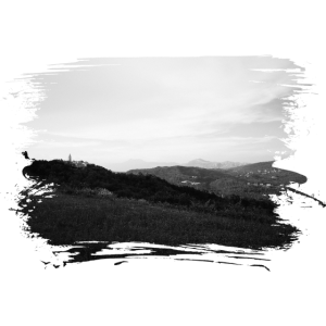 Landschaft in der Nähe von Labin Kroatien sw