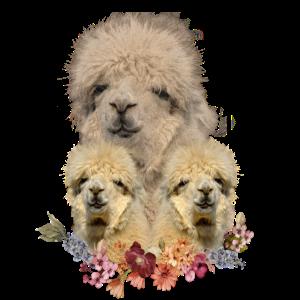 Alpaka Shirt - Alpaka Familie