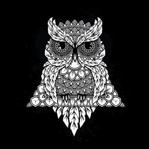 Kunstkauz Mandala Vogel Nacht