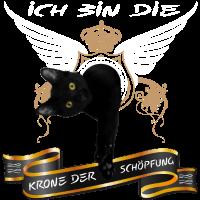 KATZE - DIE KRONE DER SCHÖPFUNG