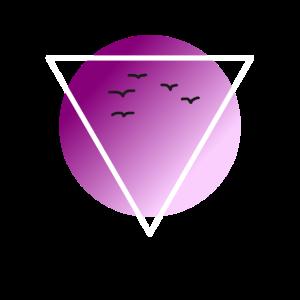 Logo Symbol Vogel Fliegen Lila Dreieck