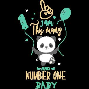 Erster Geburtstag Baby Geburtstag - Geburtstag