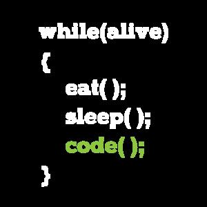 Java Programmierer Informatiker Schleife