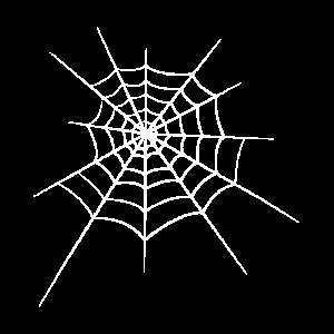 Spinne Halloween Spinnennetz