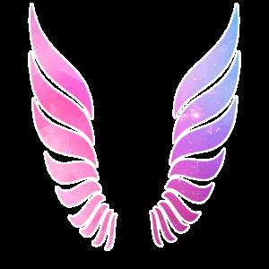 Flügel Engel Weltraum Galaxie Mädchen Frauen