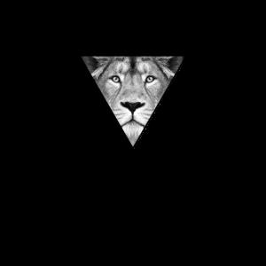 Löwe Lion Leo Leon Leonora - König der Tiere