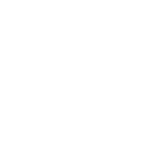 Alpaka Kakadu Kaktus Katze Kreuzung Geschenk