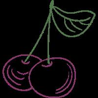 Kirsche, Frucht, Botanik, Obst, Grafik