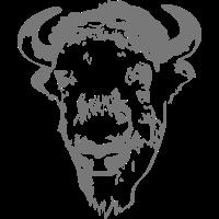 Buffalo - Bull