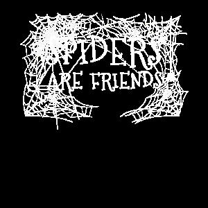 Spinne Tierliebhaber