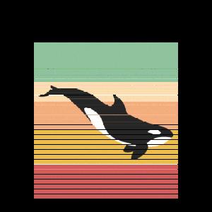 Orca Wal Retro