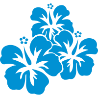 hawaii_blumen