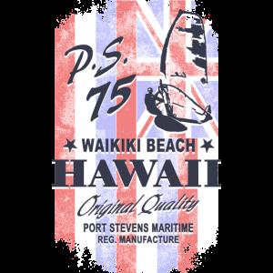 Hawaii Surfing - Hawaii Vintage Flag