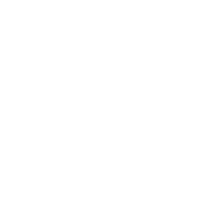 BBQ Grill Chef