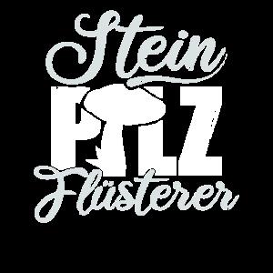 Steinpilz Fluesterer Pilzsammler