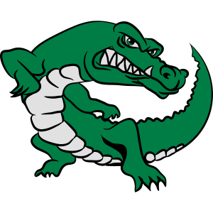 Krokodil witzig süss