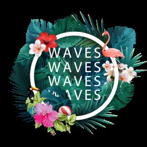 Tropical Waves Waves Surfen Surfing gute Wellen