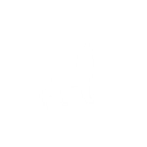 stand up for what you believe in, indianer