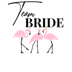 Team Bride Braut Flamingo JGA Junggesellenabschied