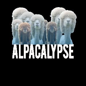 Top Spaß Alpaka Liebhaber Alpacalypse Geschenk Design