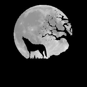 Vollmond heulender Wolf mystisch Werwolf Fantasy