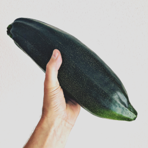 MyGarden: Zucchini