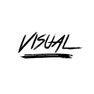 VISUAL Black Logo