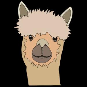 Lächelndes Lama süßes Alpaka