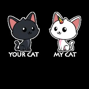 Deine Katze Meine Katze