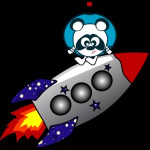 Panda auf Rakete - Monstamoons