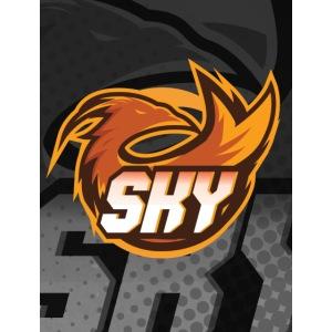 skygaming