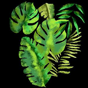 Muster Blätter Palmenblätter Dschungel