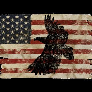 Vintage Adler Amerika Flagge
