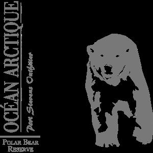 Océan Arctique - Polar Bear