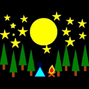 Sternenhimmel Mond Nadelwald Erlebnisurlaub Wald