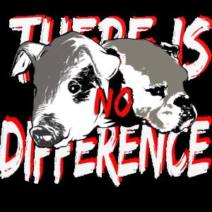 Schwein Hund No difference